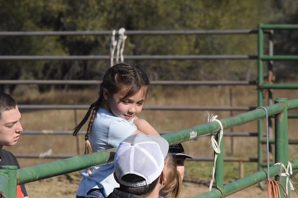 2021 Silver Valley Ranch Winter Branding