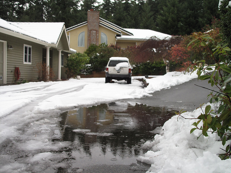 First snow of 2012 melting. Freeland, Whidbey Island. January 20, 2012.