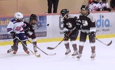 Coyotes Cup CAHA Selects vs San Diego Saints