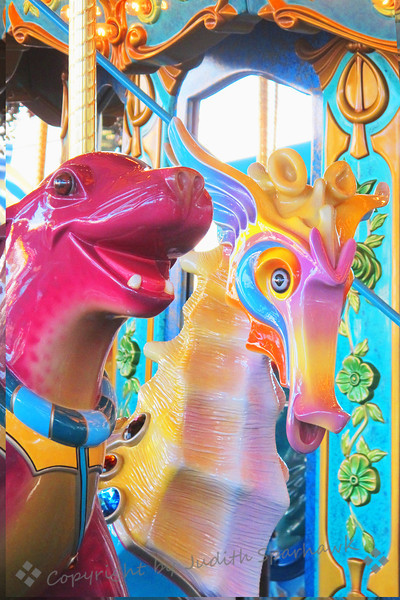 Seahorse in Colors ~ The seahorse from the underwater carousel at California Adventure at Disneyland.