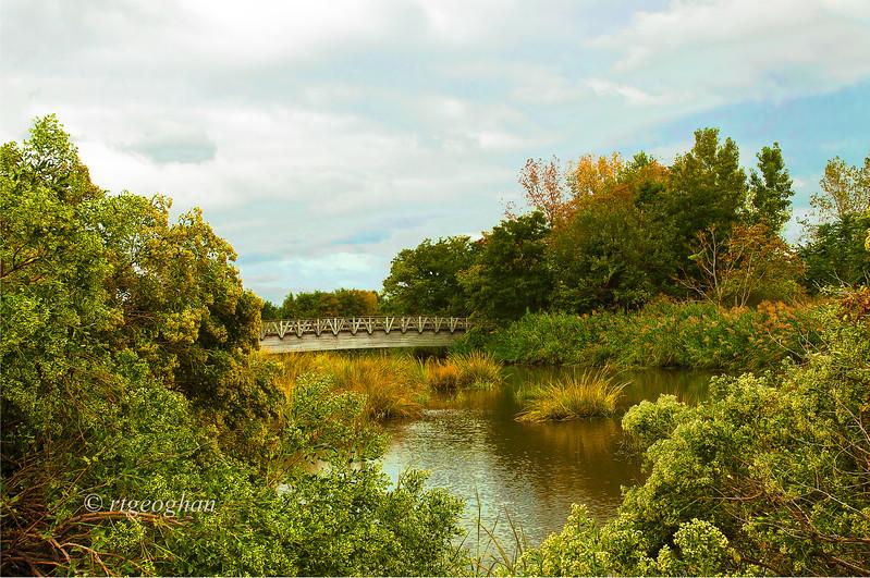Sept 20_Mill Creek Marshposaltt_0360.jpg