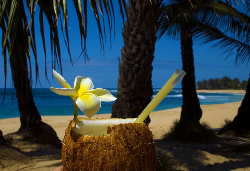 Nice cold coconut drink with a plumeria for that special Hawai'ian touch   Sunset Beach