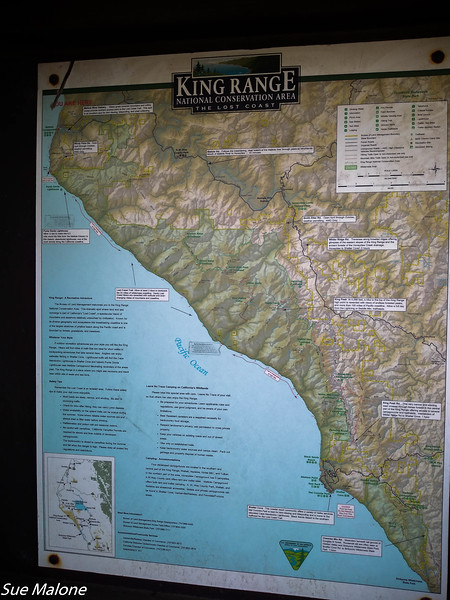 02-16-2016 Lost Coast and Redwoods from Deb-2.jpg
