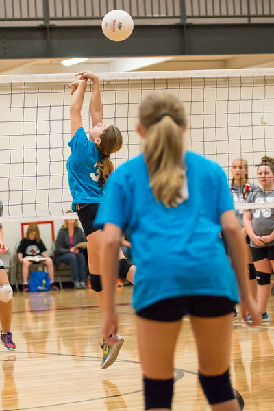 Rockford 6th Grade Volleyball Northview Tournament 11.4.17-9808.jpg