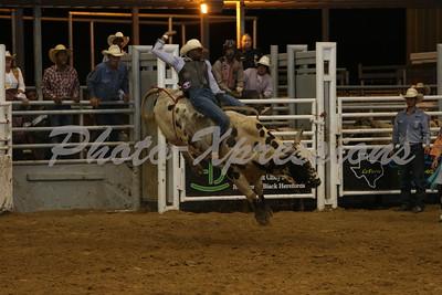 Bull Riding Sat 19th
