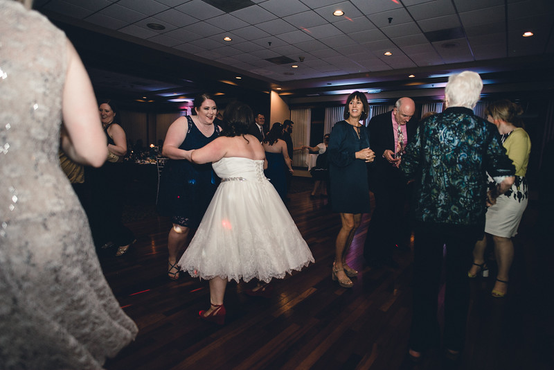 Chicago Wedding Engagement Photographer 1816.jpg