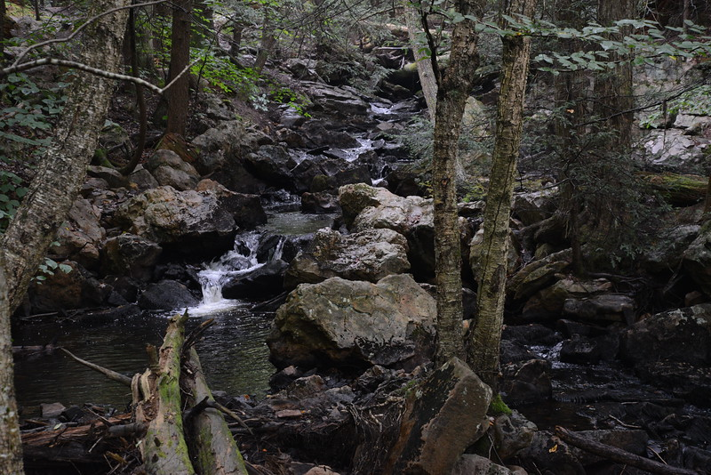 Ricketts Glen 3 08_27_19.JPG