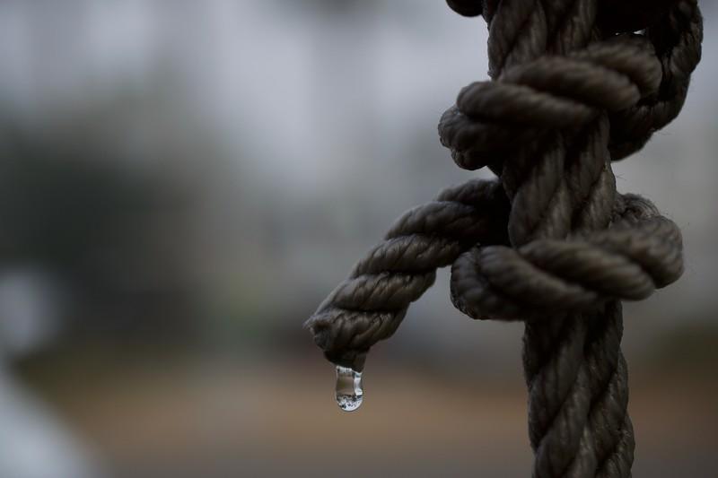 Dew Drop Rain, North Fort Myers, FL