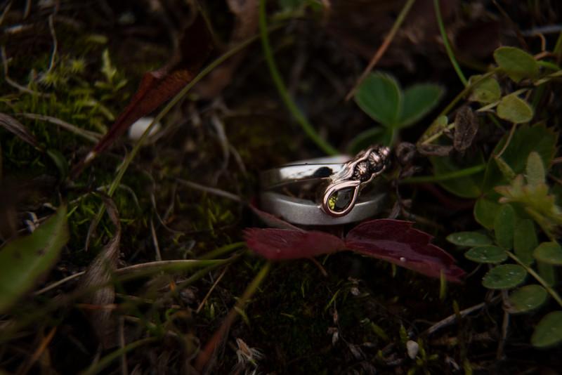 S&C Engagement-139.jpg