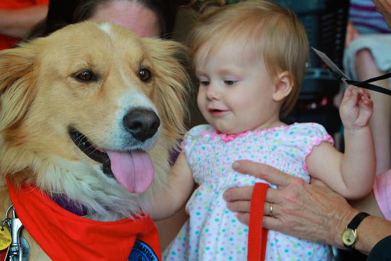 20130818_therapydogs_MH018.jpg
