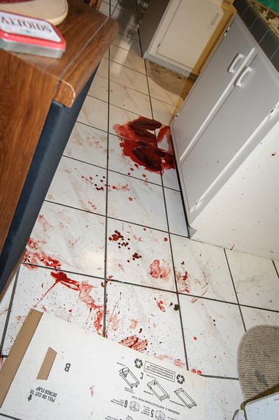 Subirats Home Deer damage-3990.jpg