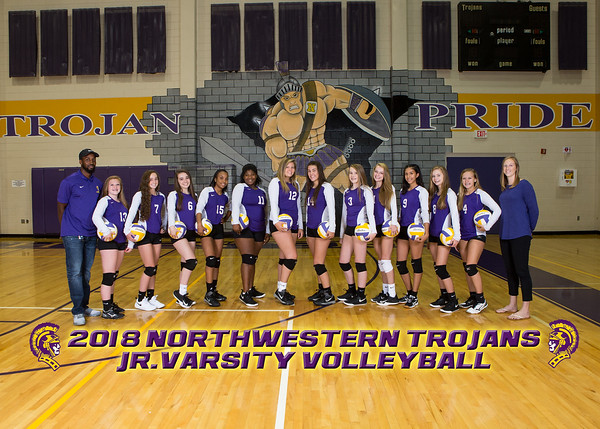 Northwestern Team