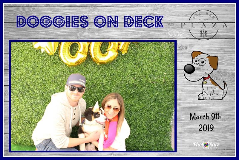 Doggys on Deck40.jpg