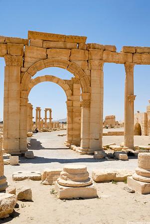 6- Palmyra