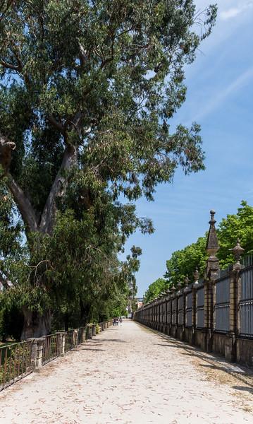 Coimbra 74.jpg