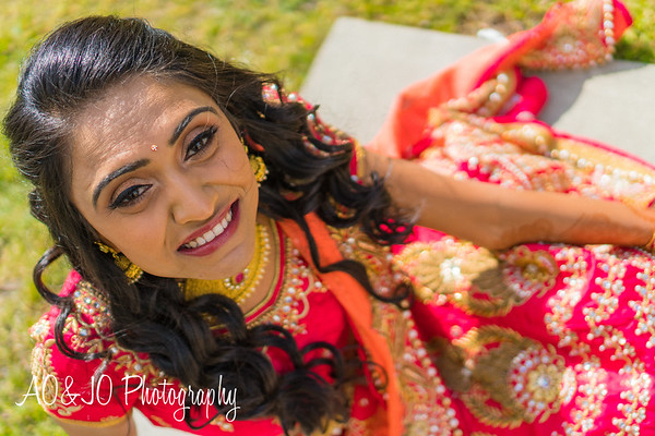 Bhumi's Mehndi :: AO&JO Photography (Raleigh Wedding Photographer)