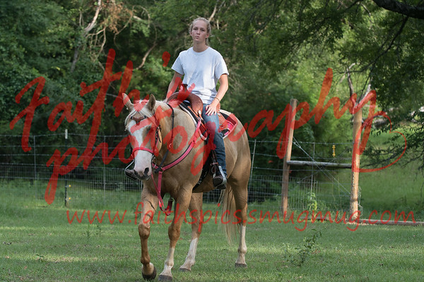 Bri looking for a barrel horse 2017