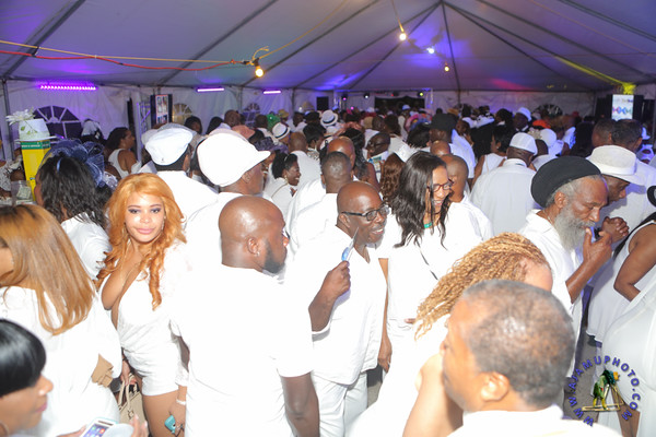 Maxine Greaves Pure White Derby Garden Soiree