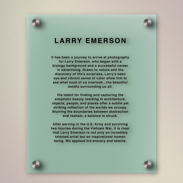 LARRY PLAQUE.jpg