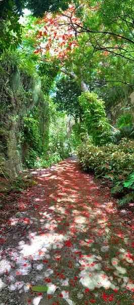 Bermuda-2019-101.jpg