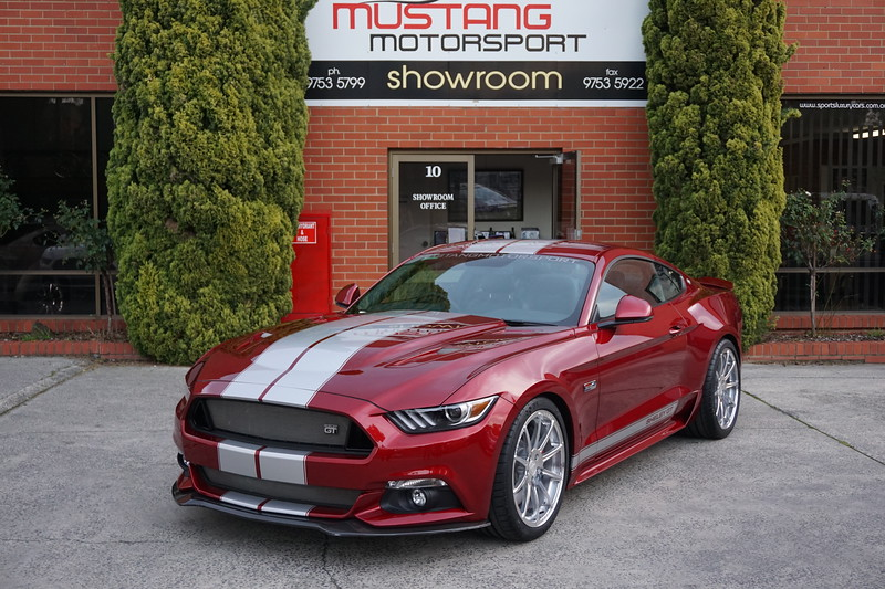 SHELBY GT CSM:17SGT0703