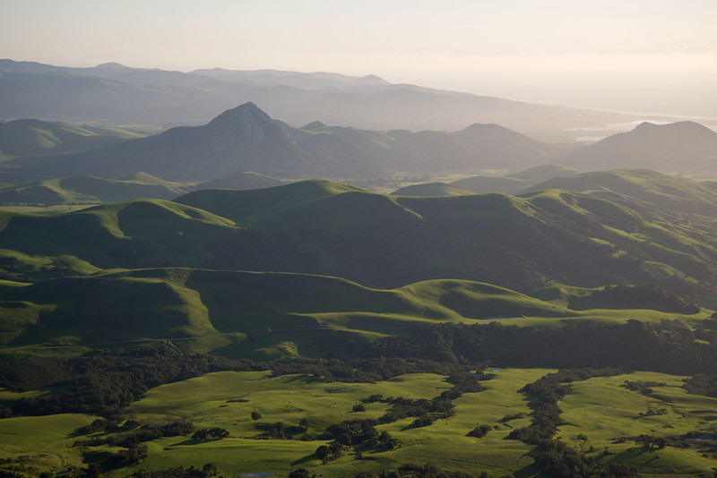 After winter rains the coast hills near San Luis Obispo turn verdant green.