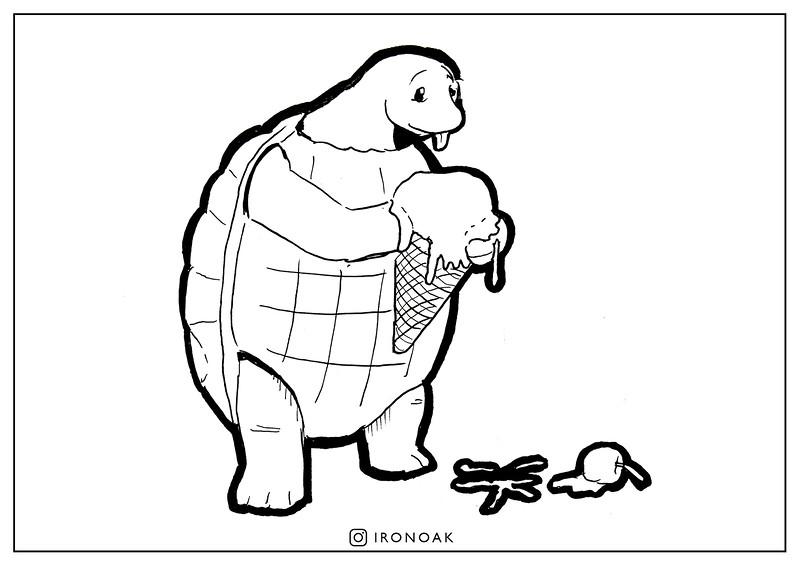 12 Turtle.jpg