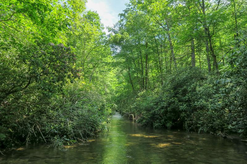 Bradley Creek (Crossing #1) -- 2,340'