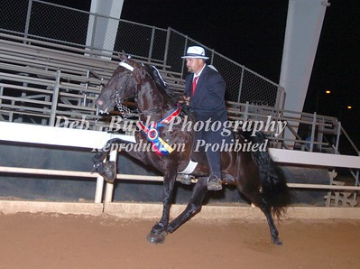 CLASS 34  WALKING HORSE STAKE OPEN RIDERS CUP