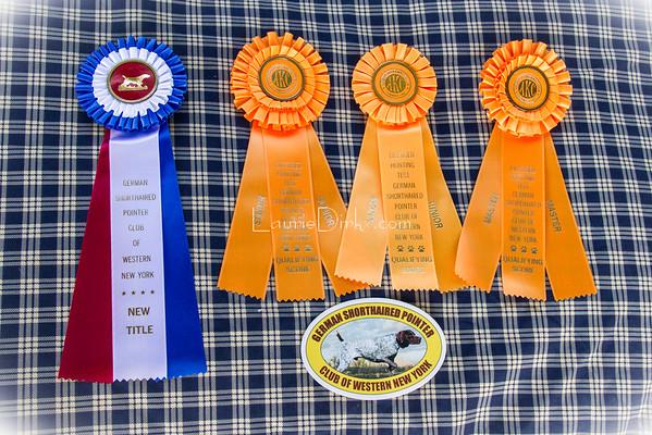 Darien Lake Field Trials 5/3/15