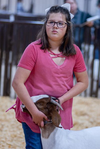 kay_county_showdown_goats_20191207-95.jpg