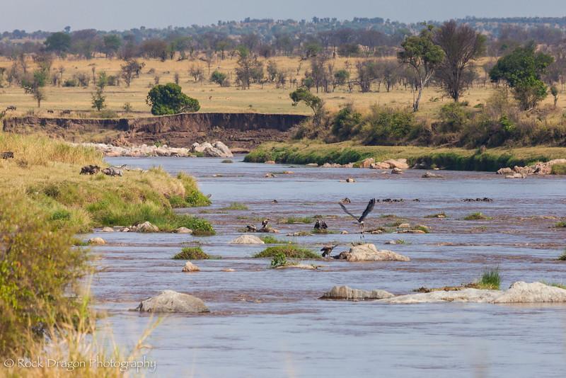 South_Serengeti-71.jpg