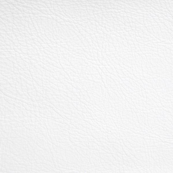 Leather-Standard-Polar.jpg