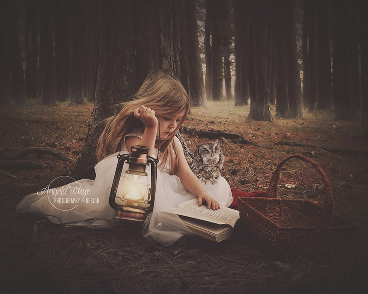 Child Reading Book with Owl in Dark Woods
