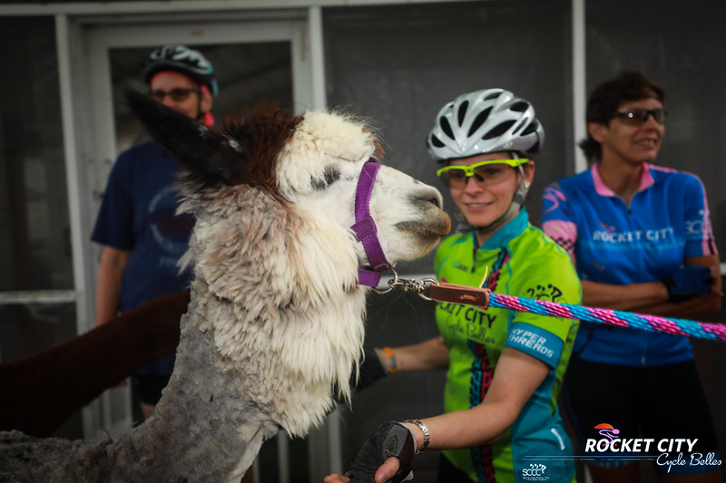 2017 RCCB Mama Llama Ride