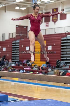 2018-2019 Gymnastics
