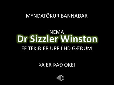 Dr. Sizzler Winston