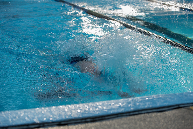 lcs_swimming_kevkramerphoto-129.jpg