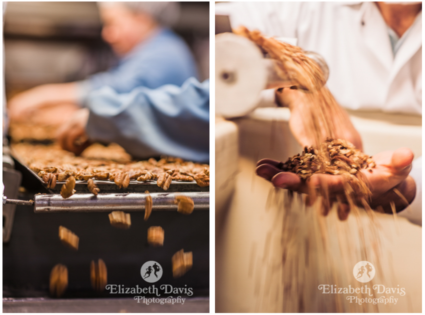 Commercial lifestyle photography for business | pecan sorting factory | Florida Georgia commercial photographer Elizabeth Davis