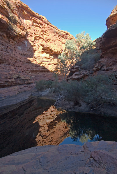 Reflection in Pool, Kings Canyon 1 - Northern Territory, Australia