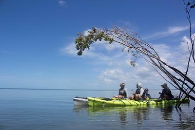 Sea Kayak Everglades - Gulf Coast 2019