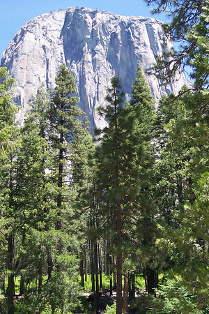 Yosemite 5-04