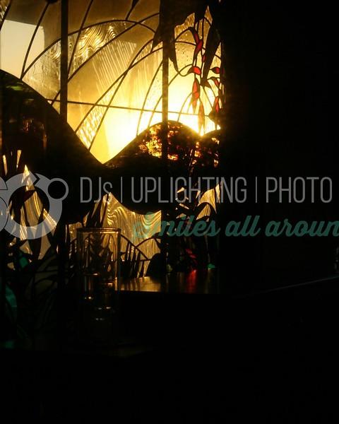 Sunset Window_batch_batch.jpg