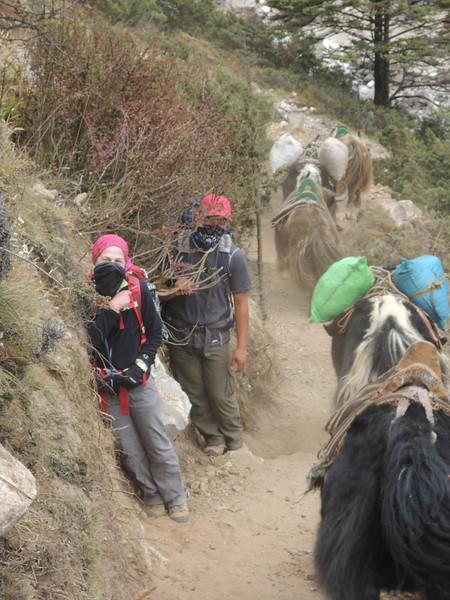 2013-Nepal-2851.jpg