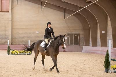 11-4-18 Horse Show