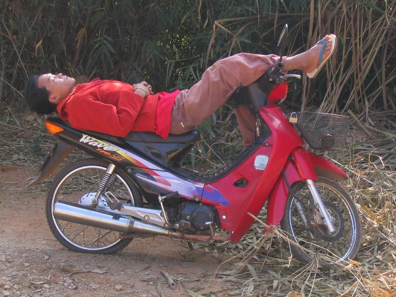 Sleep as an Artform.  Mae Fah Luang.