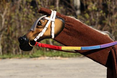 HORSE_ACTIVITIES