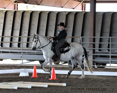 FWCD Schooling show April 2019