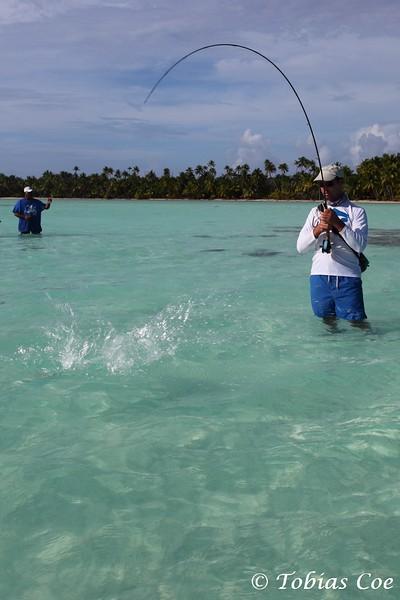 Tahiti (Anaa) (56).JPG