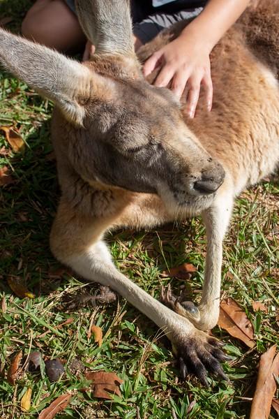 Australia_284.jpg